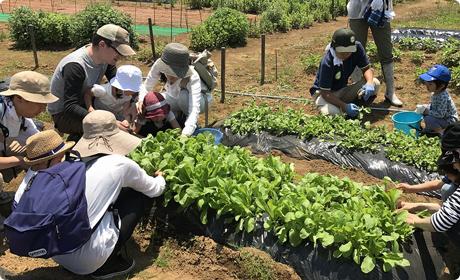 農業体験・食育イベント企画開発