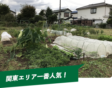 関東エリア一番人気!