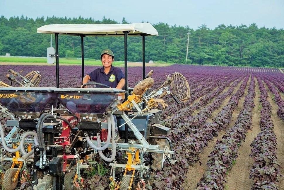 マイファームタイムス スタッフコラム|マイファームの「生産」を担う精鋭部隊!日本全国の農地で活躍するメンバーたち