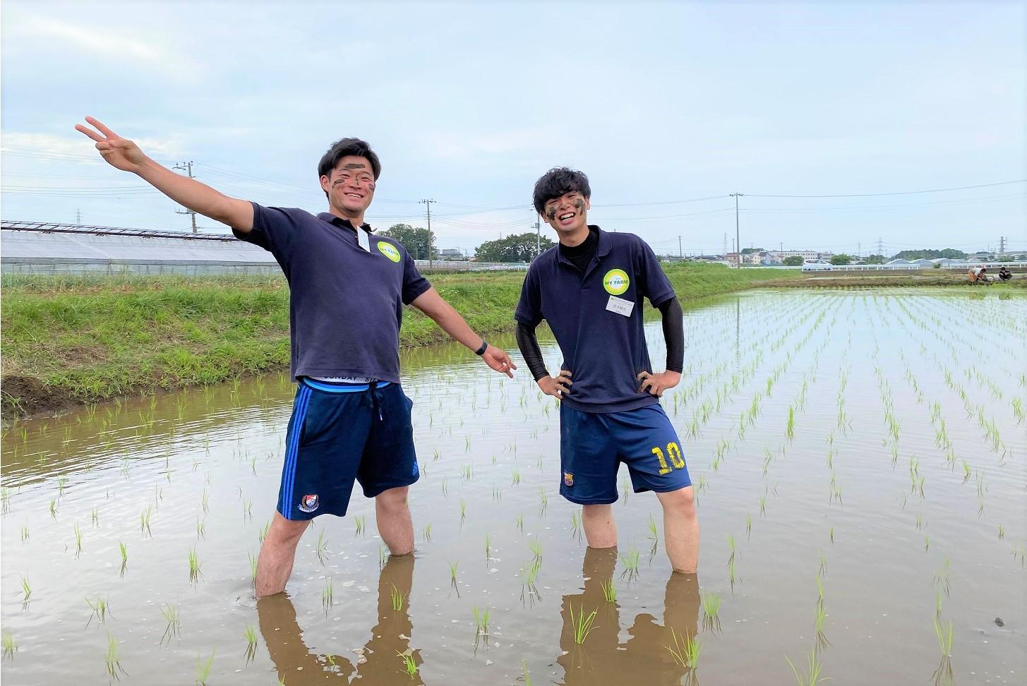 マイファームタイムス 社員インタビュー│農業男子、田んぼの中心で愛を叫ぶ。『農業サイコーー!!』